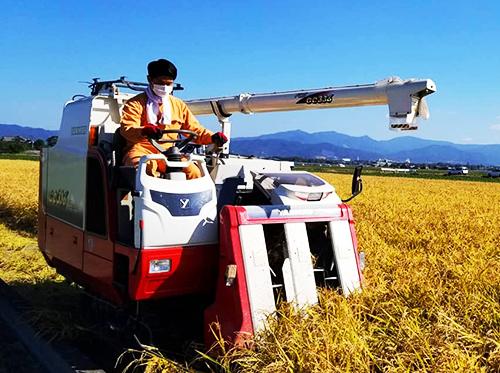 稲刈り機(阪神米穀株式会社)