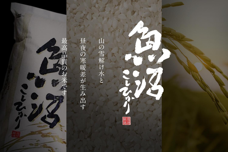 ファーストビュー・新潟県魚沼産こしひかり(阪神米穀株式会社)